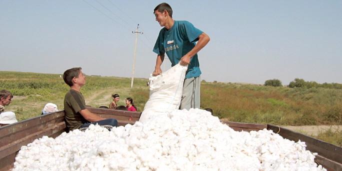 Uzbekistan launches PR campaign to lift cotton boycott