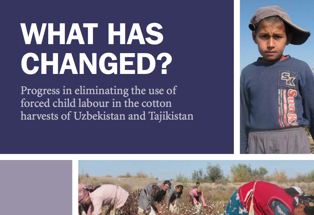What has Changed? – SOAS Report