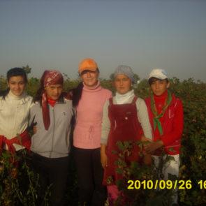Cotton 2010 – 23