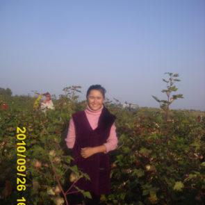 Cotton 2010 – 26