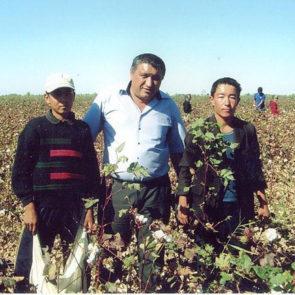 Cotton 2010 – 34