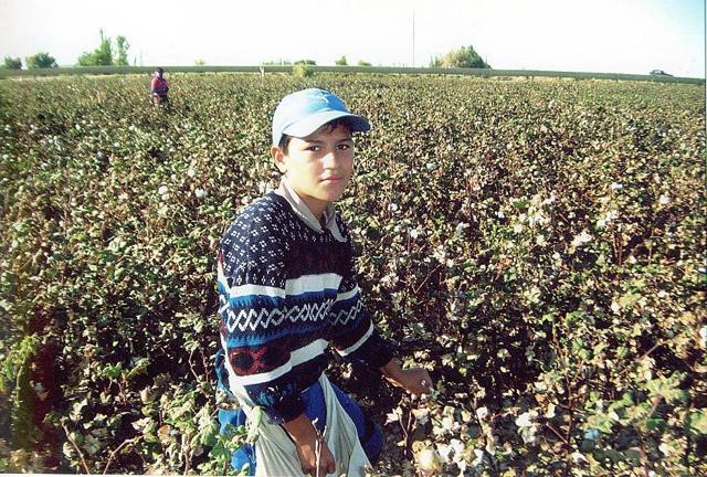 Forced Child Labour in Uzbekistan