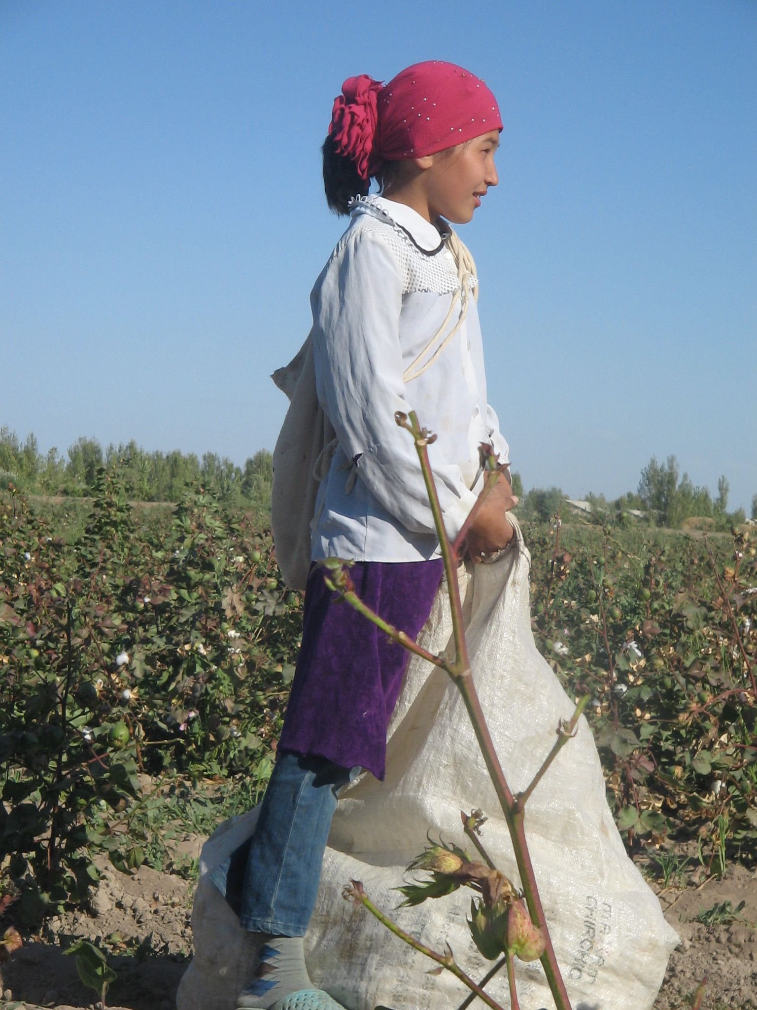 Company from Bremen supports Child Labour