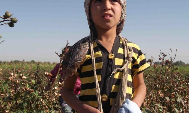 FORCED CHILD LABOR DURING THE COTTON HARVEST IN UZBEKISTAN: Monitoring results for the cotton harvest period from Sept.-Nov. 2011