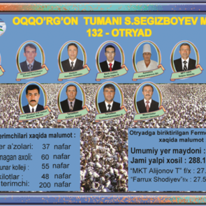 "Example of cotton harvest ""teams"" as set up by local authorities"