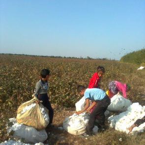 Schoolchildren, Kashkadarya region. Were sent to pick cotton by the order of authorities. October, 2013