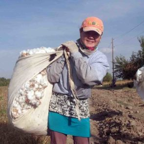 Photos of Forced Labor at Cotton Harvesting September – October 2014