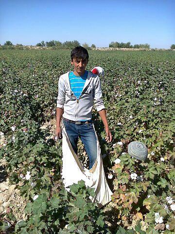 The stories of forced labour: Furkat, high school teacher