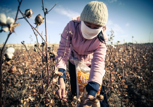 NEW REPORT RELEASED: Forced Labor Linked to World Bank