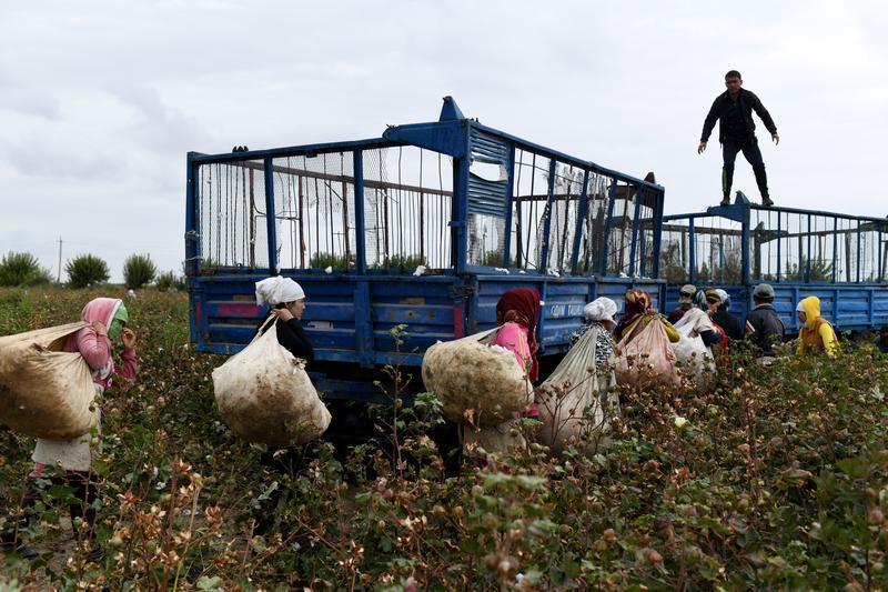 How to punish Uzbek farmers