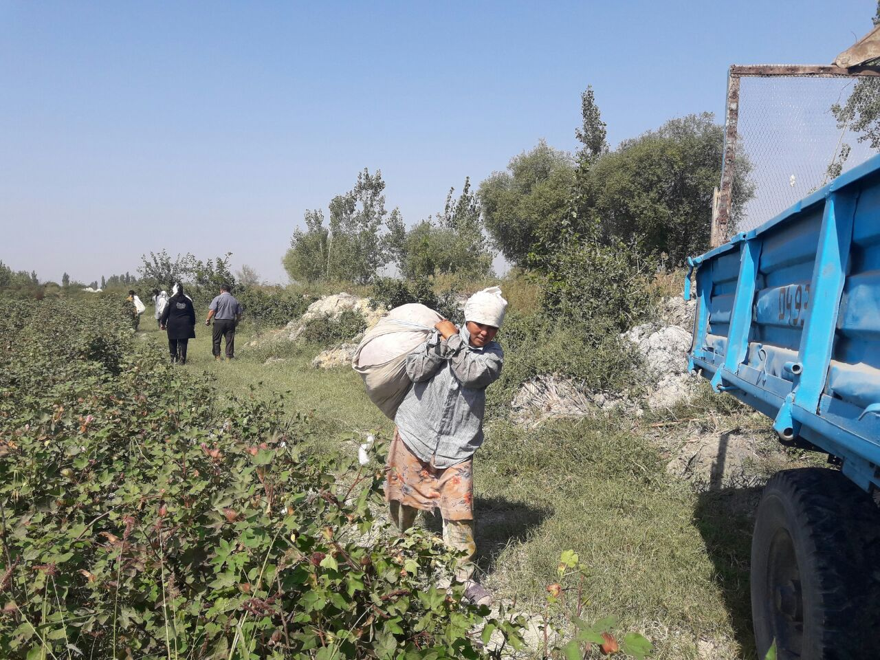 Forced Labor in Uzbekistan—Time to Turn Rhetoric Into Practice