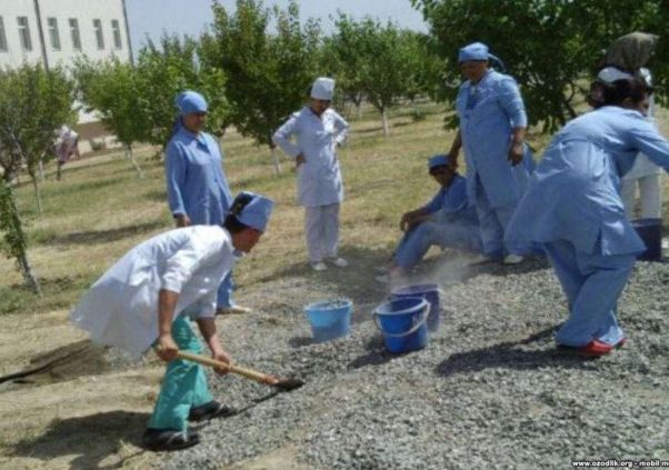 Chronicle of the labor situation in Uzbekistan