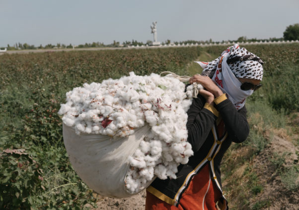 Cotton Campaign Meets with Senior Uzbek Officials in Washington —  Parties Agree to Intensify Dialogue on Ending Forced Labor