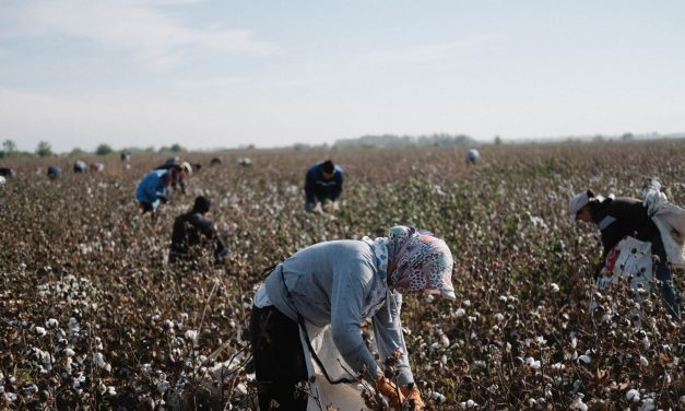 Uzbekistan: Fair Recruitment, Effective Accountability Needed to End Forced Labor as Independent Labor Monitors Harassed, Arbitrarily Detained