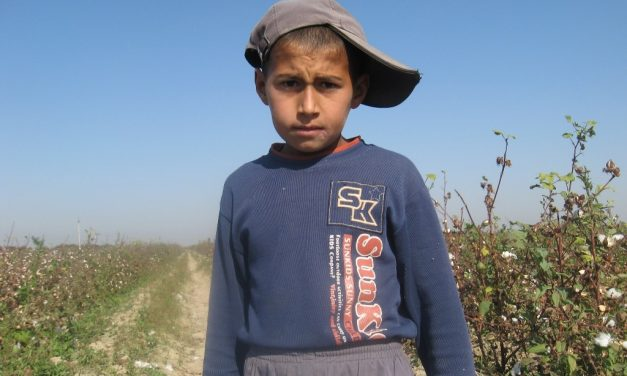 10 Years Monitoring Child and Forced Labor in Uzbekistan's Cotton Sector