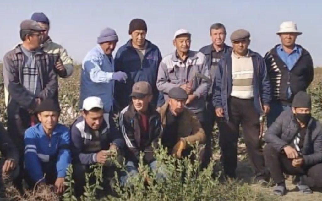 A Historic Day for Uzbekistan's Workers as Indorama Employees Vote to Form the Country's First Independent Trade Union